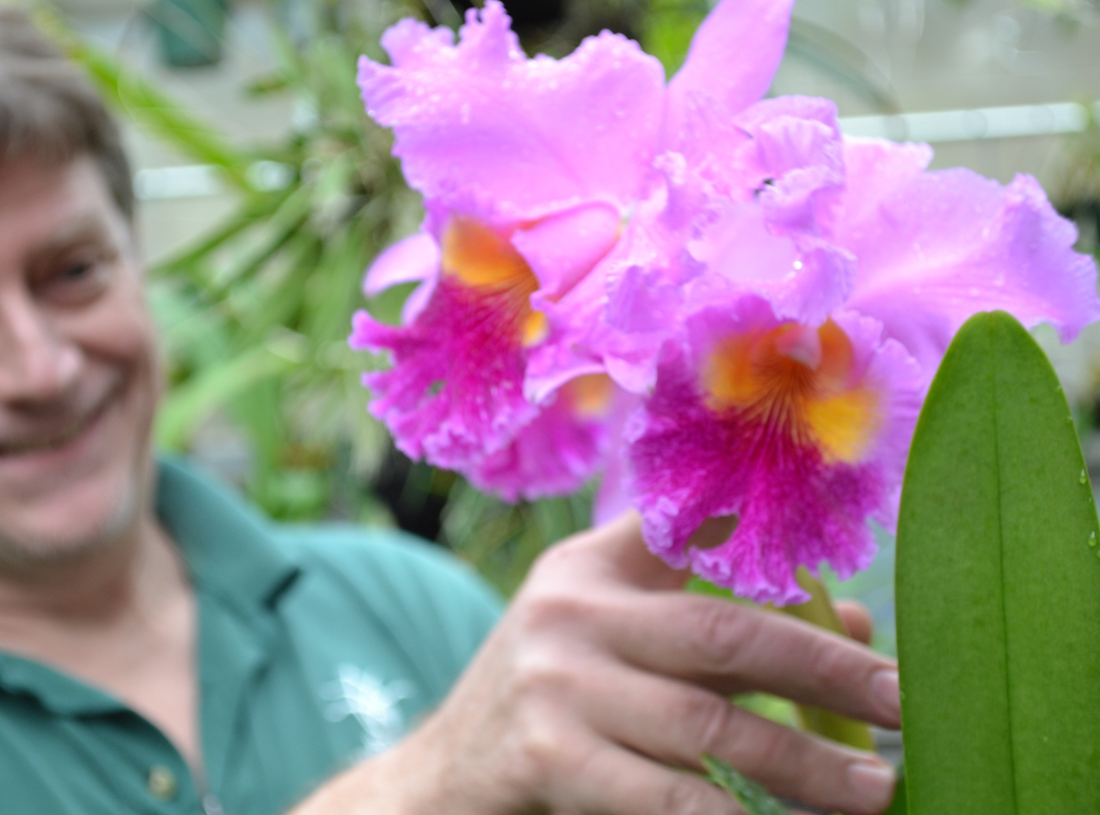 Dave Horak, BBG Orchid Curator with a lovely orchid. Photo by Elizabeth Peters