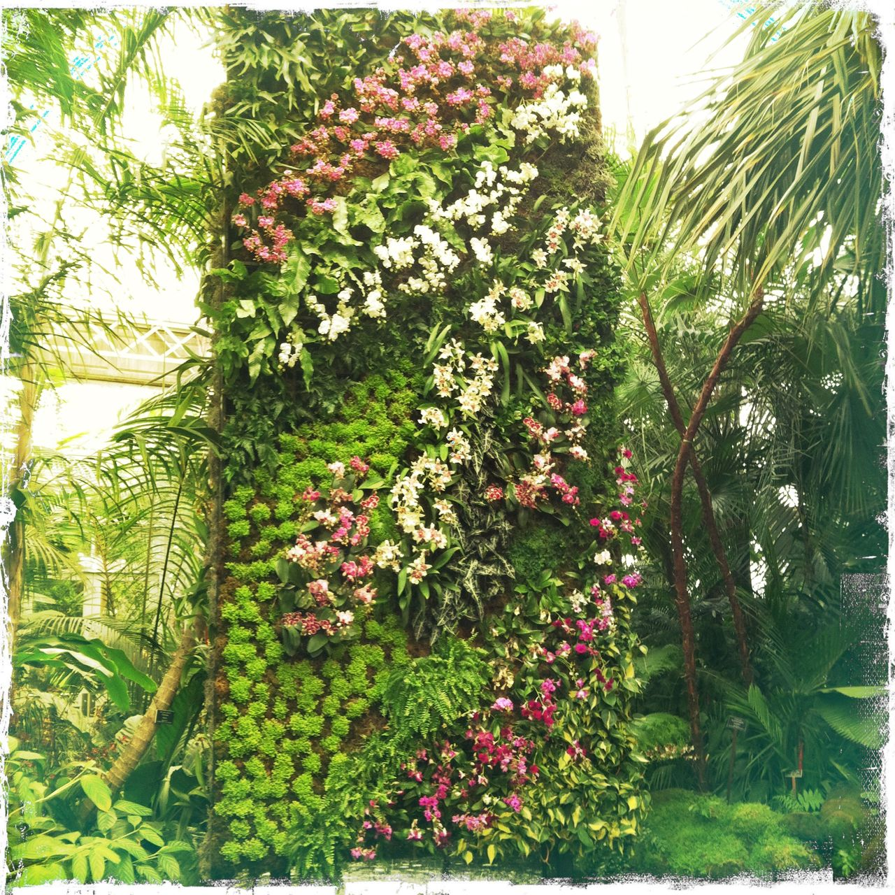 Vertical Garden - Photo by Monique Hartl
